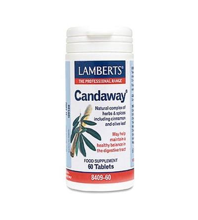 LAMBERTS CANDAWAY 60 CAP